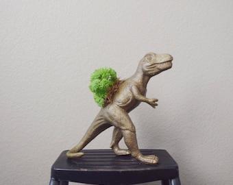 T-Rex Dinosaur Toy Planter with Faux Succulent