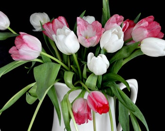 Fine Art Photography Black Background Pink and White Tulips White Vase Bouquet Archival Print