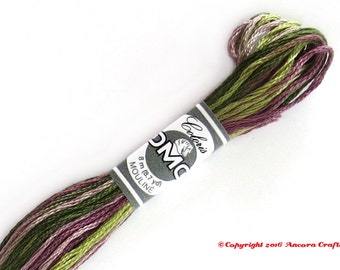 DMC 4505 Coloris Variegated 6 Strand Floss Bruyere (Heather)