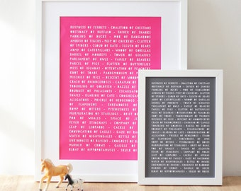 ANIMAL NOUNS PRINT Collective Grammar in Bright Colours. Perfect Child's Bedroom Art. Mothers Day Mum Her Colourful Gift For Her. Typography