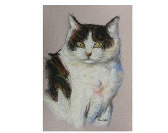 Dessin chat blanc et noir au pastel sec - création unique signée - tableau peinture portrait chat - tête félin - cadeau amoureux des chats