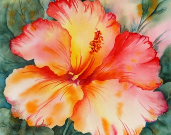 Hibiscus Flower Watercolor Tropical Peach Orange by Martha Kisling