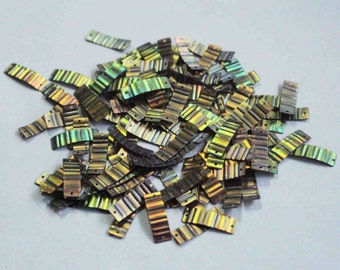 100 Rainbow / Metallic Crimpled Texture Sequins/KBRGS267