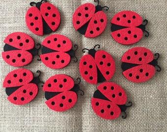 10 large felt ladybug