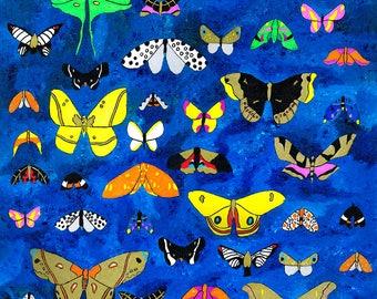 Moths of Ohio