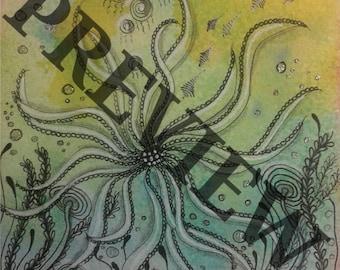 Under the Squid