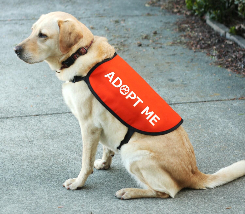 Adopt Me Dog Jacket Vest