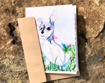 Four blank notecards of Schnauzer dog
