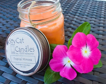 SoyCat Candles 8 oz Tropical Mimosa (Sparkling citrus & mango scented/100% Soy Wax/Homemade/Rustic Style)