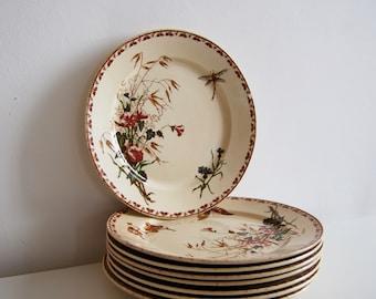 Flat plates Sarreguemines, Carmen model