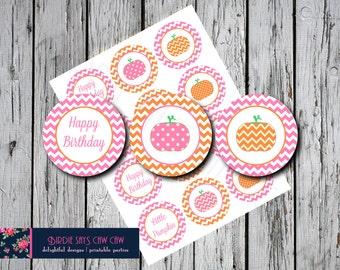 Little Pumpkin Birthday Party Circles Pink and Orange