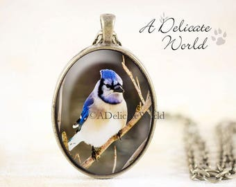 Blue Jay Necklace, Bronze Bird Jewelry Handmade, Nature Gift, Songbird Pendant Photography, Bluejay Pendent
