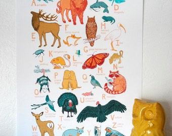 "ABC Animal Print - 13x19 print - baby kids nursery art, Great Plains, scissortail flycatcher bison fox ""Oklahoma Animals"""