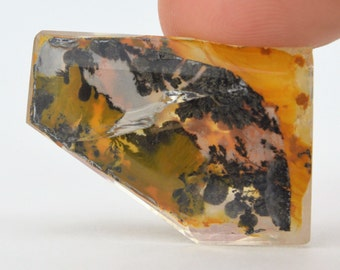 Fantastic Faceted Quartz With Dendrites