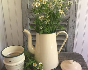 French Vintage Enamel Coffee Pot with lid and filter in cream and green color// Enamelware//Cream and Green//Farmhouse Decor