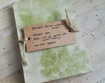 Myrrhis odorata (an ecoprinted notebook)