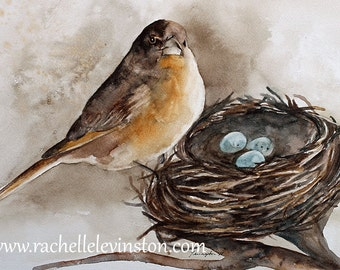 watercolor painting Bird PRINT bird Painting bird wall hanging bird home decor bird wall art robin room decor nest gold egg blue dp h