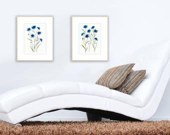 2 Cornflower Original Watercolor Paintings