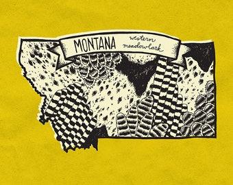 Montana State Bird Print- Western Meadowlark, 8x10 inches.