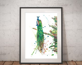 Art print Peacock watercolor painting, Hand signed