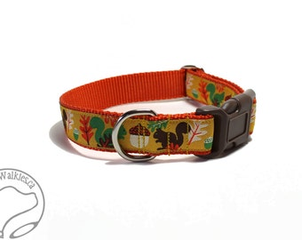 """Nuts for Squirrels on Orange Dog Collar - 1"""" (25mm) Wide - Martingale or Side Release - Choice of collar style and size - Fall Dog Collar"""