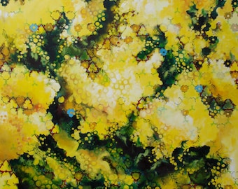 Mimosa Bloom - giclee print on paper or canvas