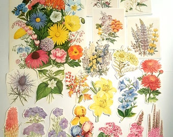 20 Piece Vintage Colourful Flower Pack  for Scrapbooking, Collage, Decoupage, Junk Journalling Assorted Colours