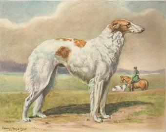 BORZOI DOG Vintage Illustration 1942 Vintage Dog Print Cottage Home Decor (No. 34)