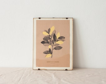 Arbutus Unedo art print - strawberry tree botanical gold and pink watercolor painting