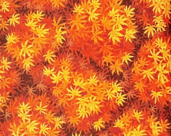 Autumn Garden 100% cotton fabric sold by the yard  #186