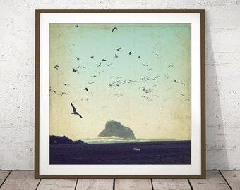 "Vintage Style Beach Print - California Ocean Print - Coastal Wall Art - Flock Of Birds - Seagulls Photograph  Rustic Wall Art  ""Earth Music"""