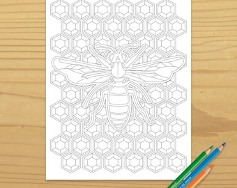 Honeybee Coloring Page, Honey Bee Coloring Page, Bee Coloring Page, Bumblebee Coloring Page, Digital Download