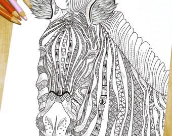 Fashion Zebra - Adult Coloring Page Print