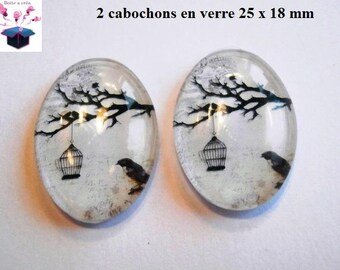 2 cabochons glass 25mm x 18mm cage theme