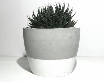 Beton übertopf topf kaktus etsy