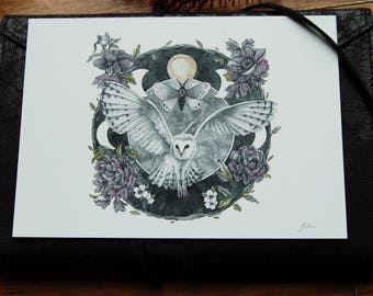 Night Magic Illustration~Giclee Print
