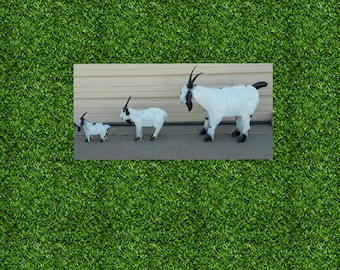 Metal Goats. Mothers Day Gifts. Rustic Metal Goats.rustic Goats. Metal Farm
