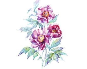Purple Flowers Original Watercolour Painting 61