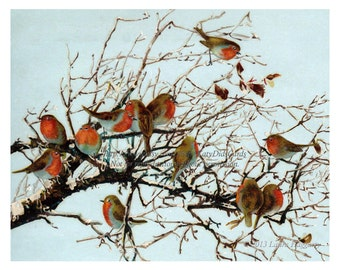 Christmas Birds Print - Flock of English Robins in Snow - Repro vintage Victorian Card