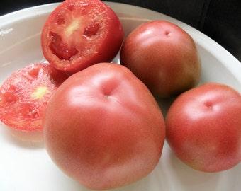 Arkansas Traveler Heirloom Tomato Seeds, Open Pollinated, Organically Grown Tomato Seeds