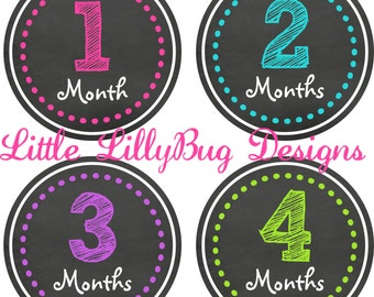 One Piece Baby Month Stickers Baby Monthly Stickers Girl Monthly Shirt Stickers Chalkboard Sketch Shower Gift Baby Milestone Sticker 704