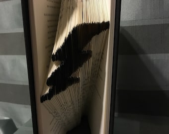 Flash or Harry Potter  - Used book with a new purpose!
