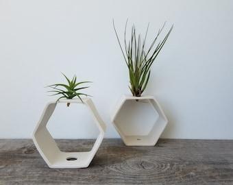 Vase de table usine d'Air hexagone, conception réversible