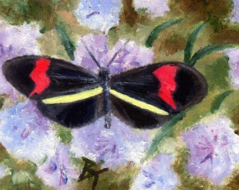 Butterfly Original aceo Painting