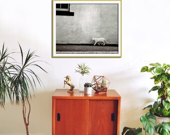 Cat Print, Black and White Photography, Animal Print, Large Wall Art, Fine Art Photography, Street Art, Urban, Cat Portrait, Art Print