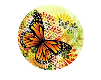25mm butterfly on flowers and yellow background