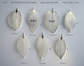 Natural Leaf, Leaf Pendant, Electroplated  925 Sterling silver, Plated Natural Real Leaf.  Sale by One