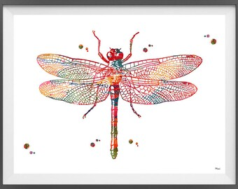 Dragonfly Watercolor print insects art dragonfly poster dragonfly art enthomology art dragonfly giclee print wall art home decor gift [326]