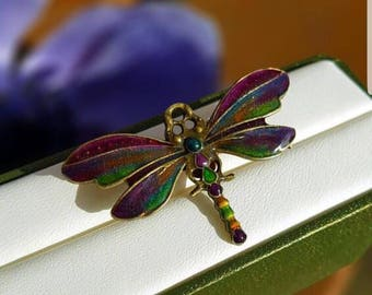 Rainbow dust dragonfly hand enamelled brooch,rainbow colours,safety pin.Comes in a beautiful gift box.PROMOTION PRICE
