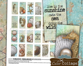 Sea Shells Digital Collage Sheet, Domino Size, Beach Images, 1x2 Collage Sheet, Domino Collage Sheet, Printable Images, Domino Images